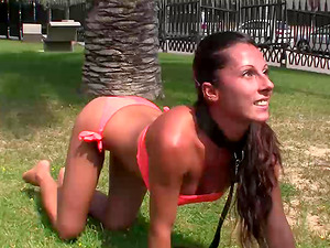 Hot fuckslut on a leash in public fucked in her bald cunt