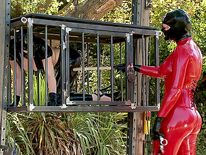 Spandex sub damsel in a box and her mistress have fun outdoors