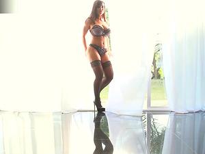 Pretty Lisa Ann in stockings always a aficionado of gigantic schlongs