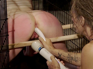 He opens her cage just so he could use his dildo pole
