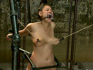 Curvy Dana Vixen Gets Nip Tantalized in Domination & submission Vid