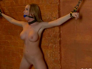 Madison Scott gets her cunt toyed and drilled hard in Sadism & masochism clip