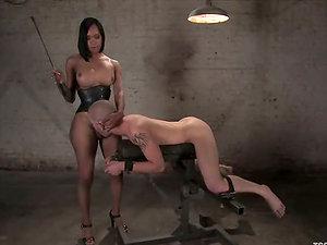 Curvy black shemale luvs how her masculine gimp bj's her shaft