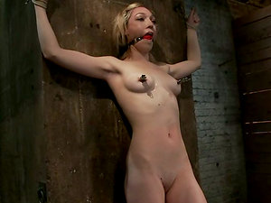 Blonde Lily Labeau gets tied up to a post and toyed