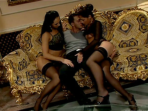 Three fabulous brunettes share a man rod in the sitting room