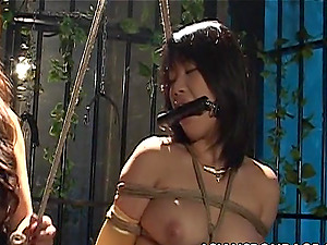 Crazy asian bombshells like it nasty in bondage & discipline fuck restrain bondage