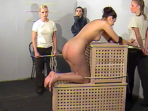Brunette girl gets her firm ass punished with a long stick