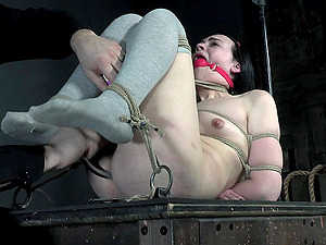 Tied up and ball gagged brunette babe Abigail Annalee abused hardcore