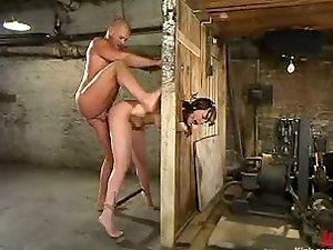 Tantalizing and Fucking Dana Dearmond in Restrain bondage Vid