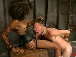 Mistress Soleli makes Wild Bill suck her Big black cock before she fucks his butt