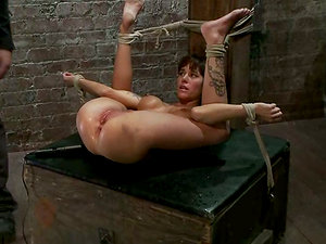 Tied up Gia Dimarco gets fingerblasted and toyed by another doll