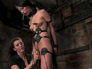 Tied Up Dark haired Beauty Veronica Jett Predominated in Lesbo Restrain bondage Vid