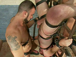 Two fags get tied and fucked rear end style by two muscular studs
